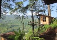 Rumah Pohon (Omah Kayu) Paralayang Batu Malang